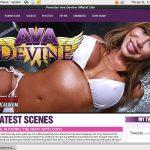 Avadevine.com Passwords Accounts