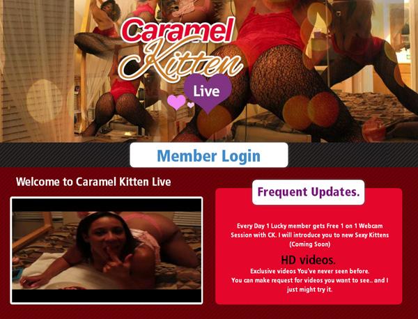Caramel Kitten Live Network